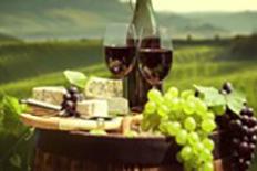 Marche WINE TASTINGS